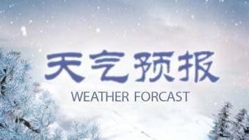 大风+寒潮!北京双预警生效中 北风劲吹需防风保暖