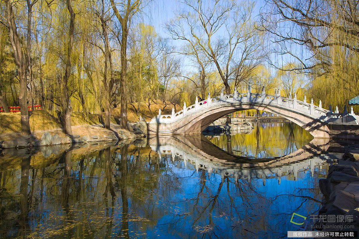 北京市近700株古樹待市民認養