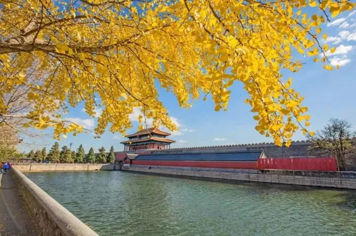 北京的秋天到底能有多美,老舍:人间天堂