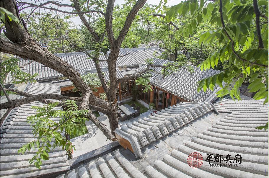 谈王刚老师四合院,论北京文化传承与新生之
