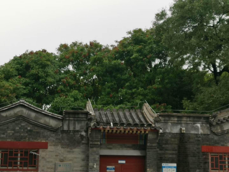 """北京楼市""""十一""""黄金周升温"""